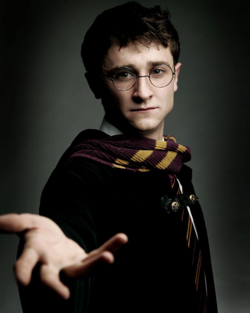 Harry Potter Themed Entertainment